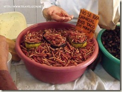 Los Chinicuiles de Tula, Hidalgo