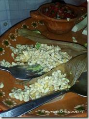 Los Escamoles, el Caviar Mexicano