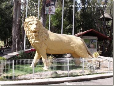 Primer Leon del Arco de la Calzada en Leon, Guanajuato