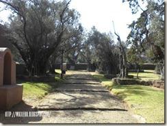 Jardin de Olivos en Tzintzuntzan