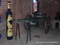 Bebidas de México: El Tequila
